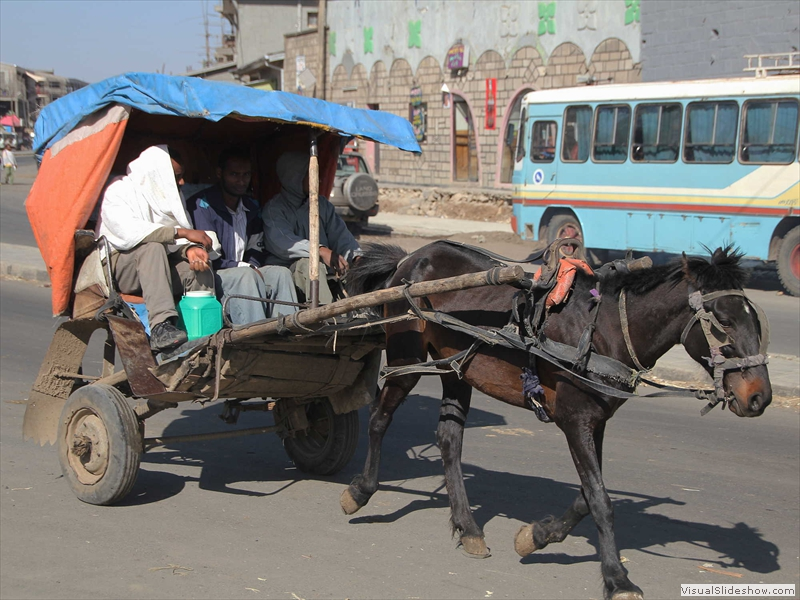 debre-birhan-town-horse-carriage-taxi