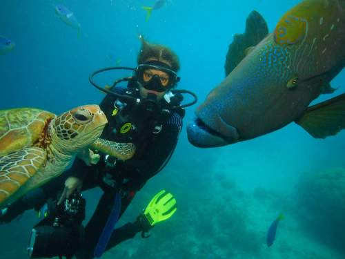 BEST NATIONAL PARKS IN THE WORLD TOP 10: Scuba diving on tropical reefs.