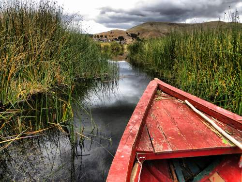 NATIONAL PARKS OF PERU [WHICH ARE BEST]: Titicaca National Reservation: Only small boats can enter the marshes of the reserve.